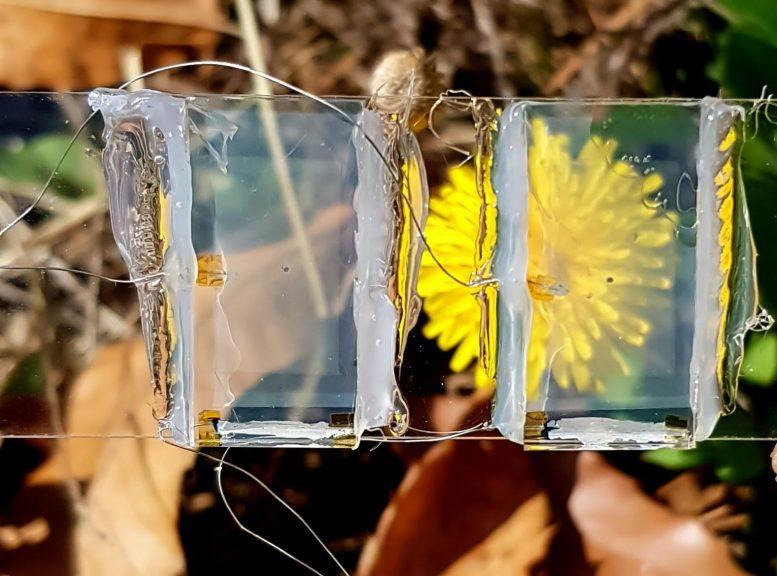 ทีมวิจัยจากอินชอนคิดค้น Solar Cells แบบโปร่งใส